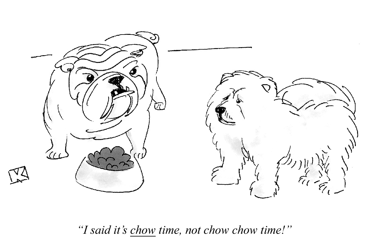 I said it's chow time, not chow chow time!