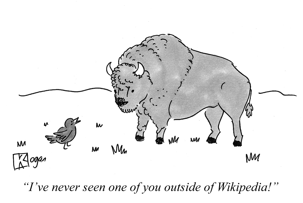I've never seen one of you outside of Wikipedia!